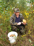 The man cuts off a mushroom an aspen mushroom in the wood Royalty Free Stock Images