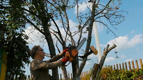 Man cuts off old branches on the tree using a saw. The gardener cuts the old branches on a tree, using a chain saw at his country house, slow motion stock video footage