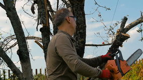Man cuts off old branches on the tree using a saw. The gardener cuts the old branches on a tree, using a chain saw at his country house, slow motion stock video