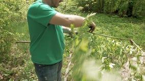 Man cuts saws tree branch in green summer forest. Man cuts and saws tree branch with knife in green summer forest. Green environment outdoor concept. 4K UHD stock video