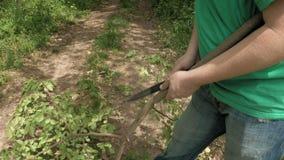 Man cuts saws tree branch in green summer forest. Man cuts and saws tree branch with knife in green summer forest. Green environment outdoor concept. 4K UHD stock video footage