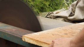 Man cuts wood on the circular saw. stock video