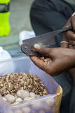 Man cutting betel nuts on the street of Mumbai Stock Photography