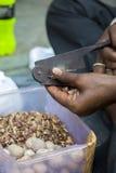 Man cutting betel nuts on the street of Mumbai Stock Photography