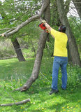 Man cutting a branch with a chainsaw. A volunteer worker cutting a branch with a chainsaw Royalty Free Stock Image