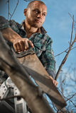 Man cutting a branch Stock Photography