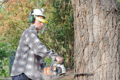 Man cutting with chainsaw Royalty Free Stock Photos