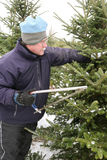 Man cutting a Christmas Tree Stock Photo