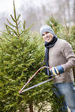 Man Cutting Christmas Tree Stock Photography