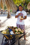 Man cutting coconuts, Dominican Republic Stock Images