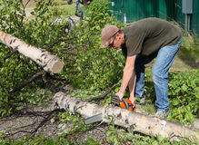 Man cutting firewood Stock Image