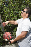 Man Cutting Garden Hedge Royalty Free Stock Photos