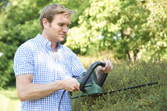 Man Cutting Garden Hedge With Electric Trimmer Royalty Free Stock Image