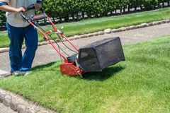 Man cutting grass with lawn mower stock photo