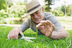 Man cutting grass with scissors Royalty Free Stock Photography