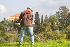 Man cutting grass Stock Image