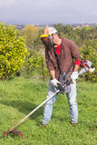 Man cutting grass Royalty Free Stock Photography