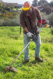 Man cutting grass Stock Photos