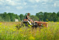 Man cutting hay royalty free stock image