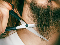 Man cutting his beard Royalty Free Stock Photos