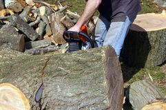 Man Cutting Log Stock Photo