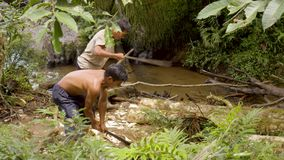 Man cutting log in forest. Amazonian deforestation, man cutting tree log with saws near stream in amazon jungle in Ecuador stock footage