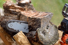 Man cutting lumber with chainsaw Stock Image