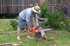 Man Cutting Up a Tree With Chainsaw Stock Images