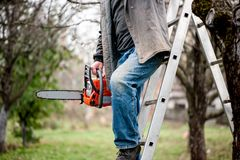 Man cutting wood from trees climbing a ladder. And using a chainsaw Royalty Free Stock Images
