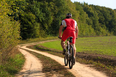 Man is cycling in autumn forest Stock Image