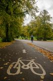 Man cycling next to Bike lane in Autumn stock image