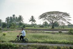 The man cycling thru the village royalty free stock image