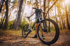 Man cyclist rides forest paths Stock Photos