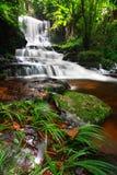 Man Daeng Waterfall Stock Photos