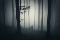 Man in dark forest with fog. Man walking in dark mysterious forest with fog Stock Images