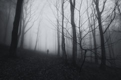 Man in dark scary forest with fog Royalty Free Stock Image