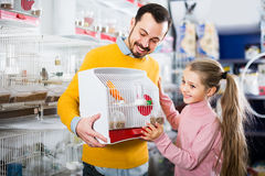 Man and daughter be glad   bird Stock Photography