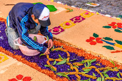 Man decorates dyed sawdust Lent carpet, Antigua, Guatemala. Antigua, Guatemala - March 26, 2017: Local decorates Lent carpet for procession with flowers & dyed royalty free stock photos