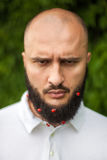 Man with decoration in beard Stock Photo
