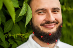 Man with decoration in beard Royalty Free Stock Image