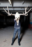 Man with deer skull in the basement Stock Image