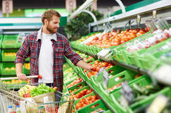 Man defining quality of tomato in supermarket Stock Photography