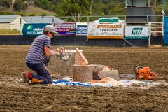 Murrurundi, NSW, Australia, 2018, February 24: Demonstration of Chainsaw Art. Man demonstrating his skill at carving with a chainsaw during the King of the royalty free stock photography