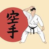 Man demonstrating karate. Stock Photos
