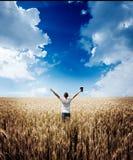 Man den hållande övre bibeln i ett vetefält Arkivbild