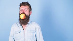 Man den stiliga hipsteren med det långa skägget som äter äpplet Mannen bantar näring äter frukt Idé för mellanmål för frukt sund  arkivfoto