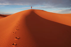 Man in desert Royalty Free Stock Image
