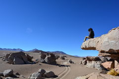Man at the desert of Dali, Bolivia Royalty Free Stock Image