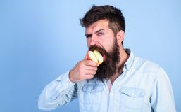 Man diet nutrition eats fruit. Healthy nutrition concept. Man handsome hipster with long beard eating apple. Hipster. Hungry bites juicy ripe apple. I love royalty free stock photos