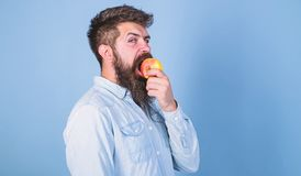 Man diet nutrition eats fruit. Healthy nutrition concept. Man handsome hipster with long beard eating apple. Hipster stock images